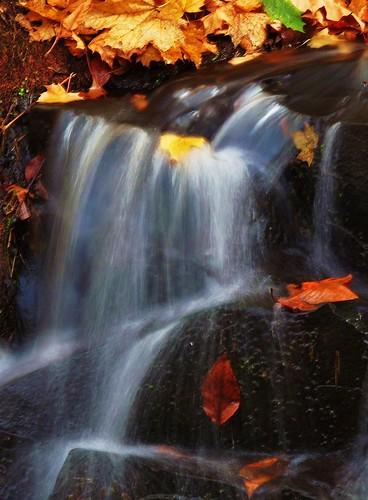 november autumn usa fall waterfall connecticut newengland rockyhill dividend 06067 johnjmurphyiii