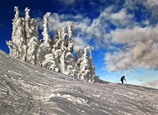 Snowscape Skiing