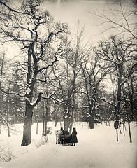 Djurgården park, Stockholm, Sweden