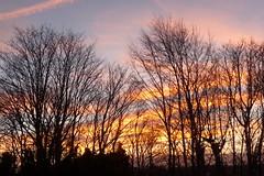 Sunsets & Sunrise