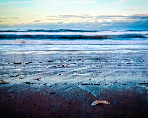 new winter england cold beach water ma sand waves massachusetts newengland shore seashell atlanticocean newburyport 2010 parkerrivernationalwildliferefuge