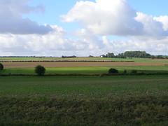 Bataille de Crécy le 26 août 1346
