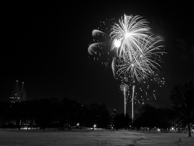 New Year's Fireworks at Central Park 2011