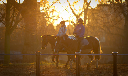 Sunset Horse Riders, Hyde Park