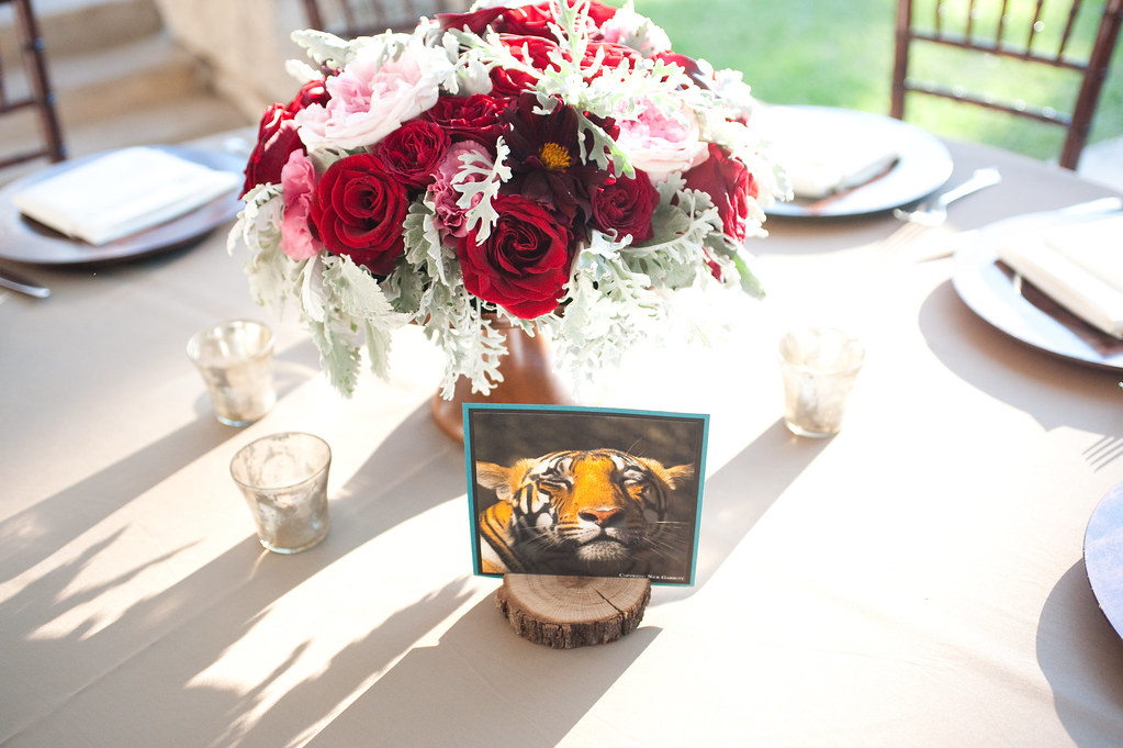 Escort card with tiger photo displayed on dinner table at wedding