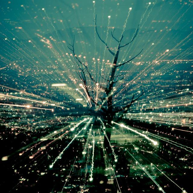 tree of city life