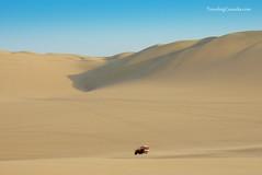 wadi(0.0), grassland(0.0), erg(1.0), sand(1.0), aeolian landform(1.0), natural environment(1.0), desert(1.0), dune(1.0), landscape(1.0), singing sand(1.0),
