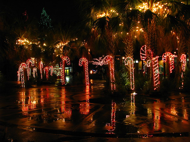 Lights Before Christmas Riverbanks Zoo | X-Mas