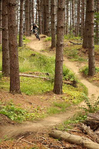 vermont mountainbiking eastburke trailriding kingdomtrails