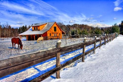 lake placidusa2010decembredecember