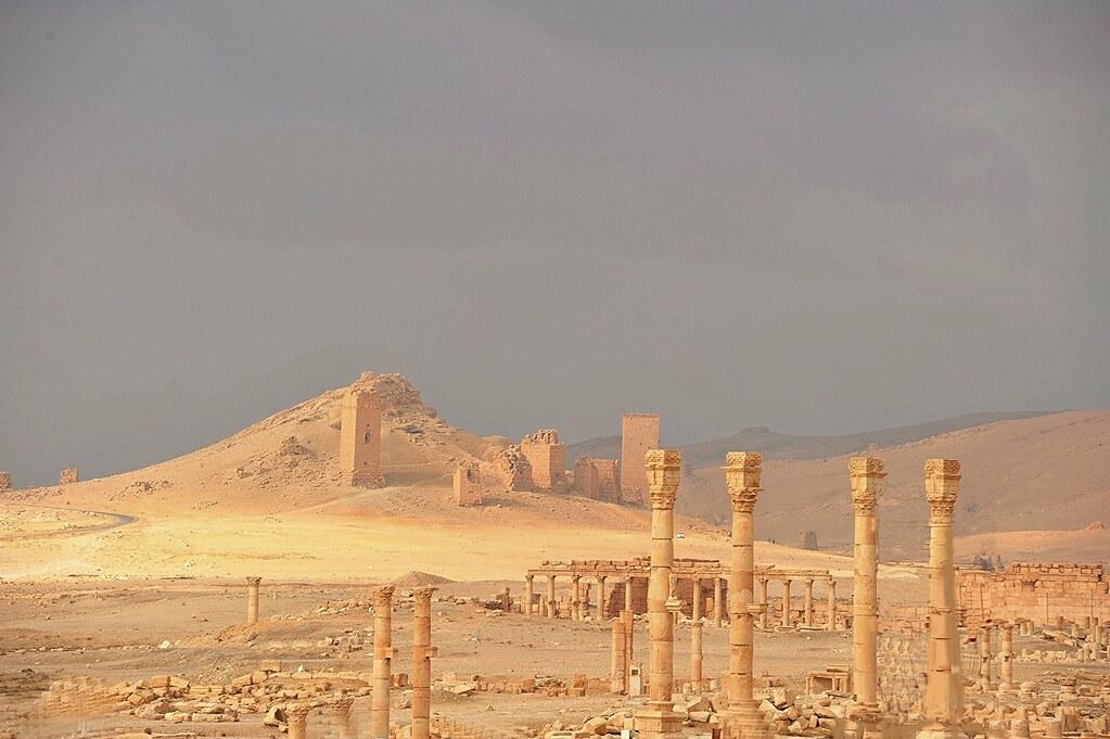 DSC_1886 Palmyra (Syria)