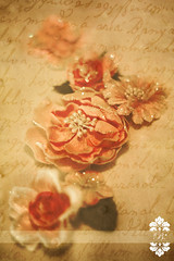 Vintage Shabby Chic Roses -- 365 Project