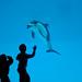 20110115 Nagoya Aquarium 1 (Hi!!!)