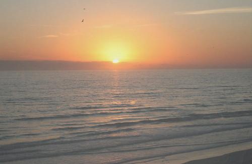 ocean sun beach water sunrise blog waves florida wordpress etsy daytona