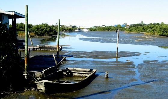 Cedar Key Boat Rentals Island Tours