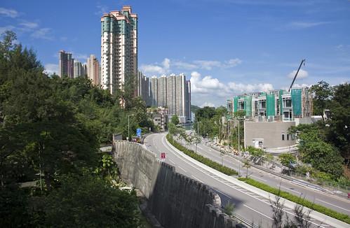 19-development