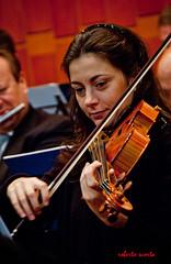 bowed string instrument, violinist, classical music, string instrument, musician, violin, viol, viola, musical ensemble, music, fiddle, performance, violist, string instrument,