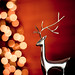 """""""The stockings were hung by the reindeer with care..."""" by CarolynsHope"""