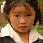 Cautious Look - Sikkim