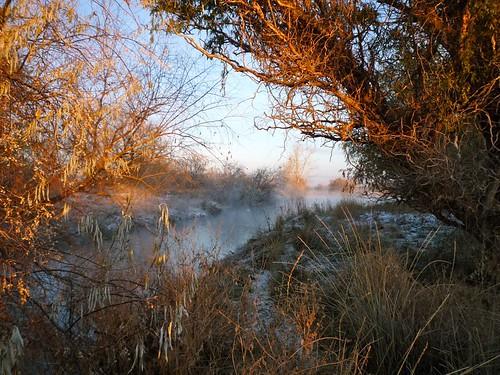 winter sunrise pond idaho nampa southpond wilsonponds
