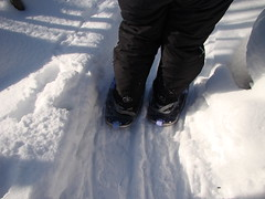 snow angel(0.0), snowboard(0.0), winter storm(0.0), freezing(0.0), snowshoe(1.0), footwear(1.0), winter(1.0), white(1.0), snow(1.0), ice(1.0), blizzard(1.0),
