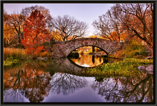 park new york city nyc newyorkcity bridge autumn fall colors leaves sunrise canon landscape mark centralpark ii 5d cental