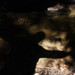 Shadows in the river at the Dunino Den in Fife. by Shandchem