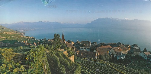 Lavaux, Vineyard Terraces