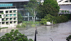 natural disaster, flood, residential area, disaster, neighbourhood,