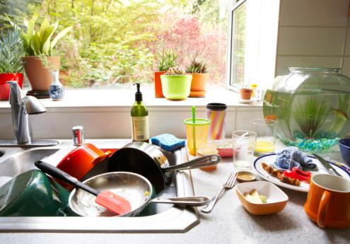 過年不想再洗碗?試試這只「不用洗」的碗