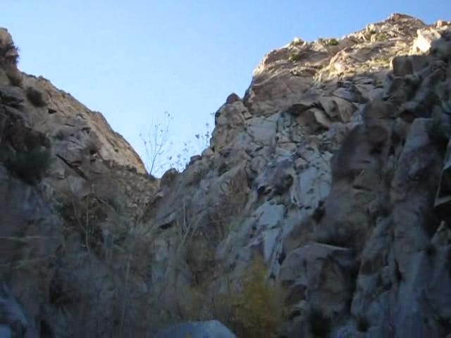 Cougar-Canyon_311