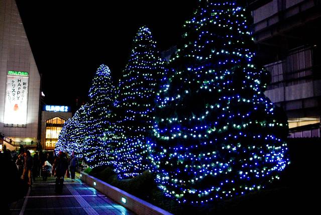 Roppongi in Christmas