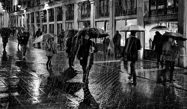 Tribute to Rui Palha