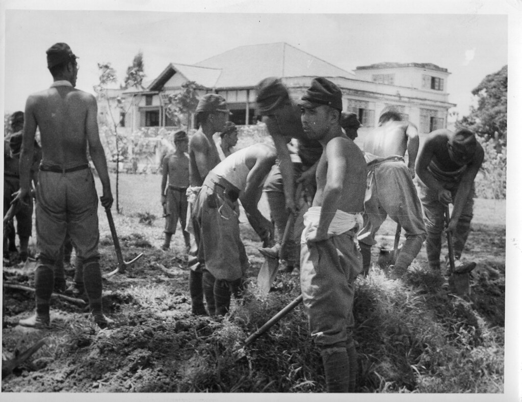 the pacific war treatment of pows The wwii pow experience in the pacific  of prisoners of war pows were  that the american treatment of the japanese in the pacific war was.