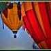BalloonReno_6129d