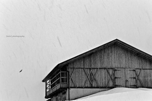 fienile sotto nevicata
