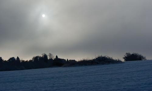 Barley Field: snow and feeble sun