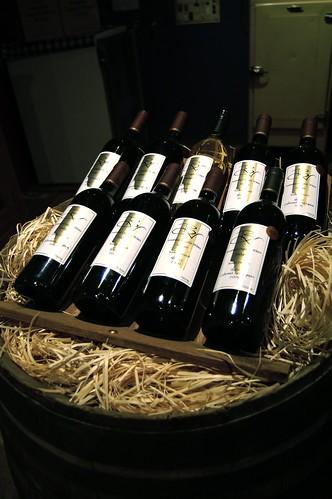 Broombee Organics Winery, Mudgee - 2