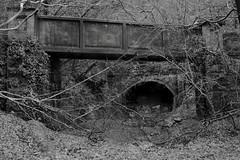 Walnut Tree Tunnel (South Portal)