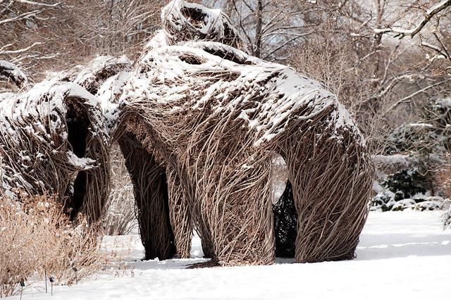Patrick Dougherty twig huts installation at Brooklyn Botanic Garden in winter snow