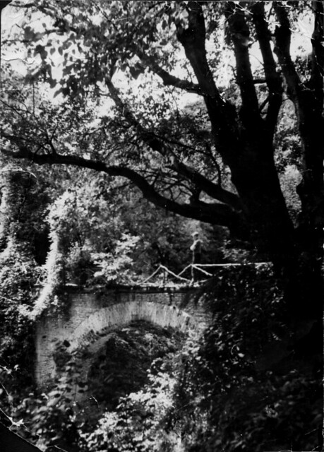 Старый мостик в Ботаническом саду