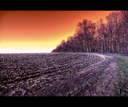 cold field surreal rosso freddo hdr buckscounty sigma1020mm langhorne surreale fedesk8
