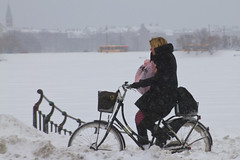 Snowstorm Headwind Mobile Chat - Winter Cycling in Copenhagen