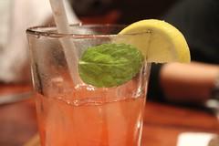 bloody mary(0.0), produce(0.0), singapore sling(0.0), caipiroska(1.0), mojito(1.0), distilled beverage(1.0), limeade(1.0), mint julep(1.0), drink(1.0), cocktail(1.0), caipirinha(1.0), mai tai(1.0), alcoholic beverage(1.0),
