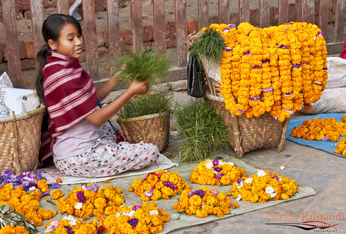 Vendor of flower offerings