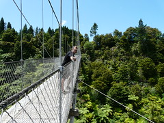 suspension bridge, canopy walkway, rope bridge, bridge,