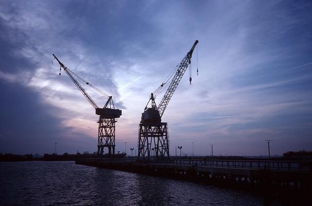 Red Hook Cranes 6
