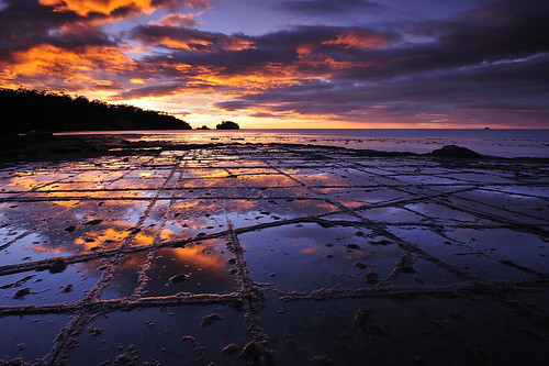 Tessellated Pavement #2, Tasmania