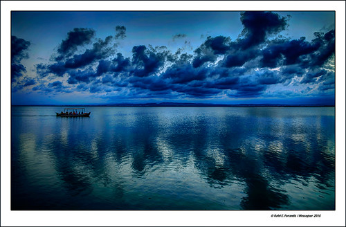 L'Albufera a l'hora blava 32 (L'Albufera at the blue hour 32) L'Albufera, València, l'Horta, Spain