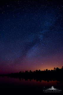 SKY & STARS OF THE EVERGLADES